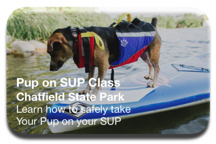 Specialty Class Pup on SUP