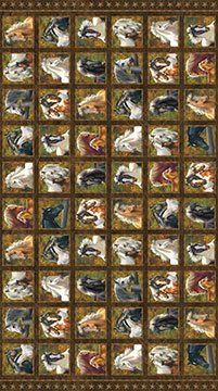 Horses Fabric Wild & Free Collection by Northcott