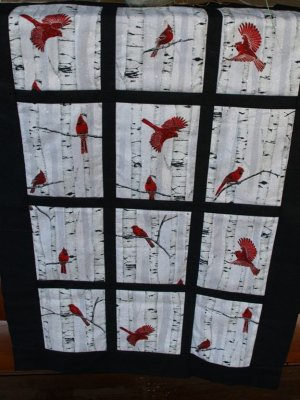 Cardinals fabric in Window Pane Fabric Frame