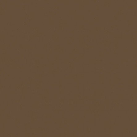 American Made Brands Solids Fat Quarter - Light Brown by Clothworks