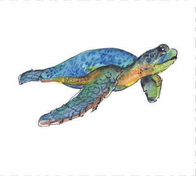 Sea Turtle Quilt Block Art by Kathleen McElwaine