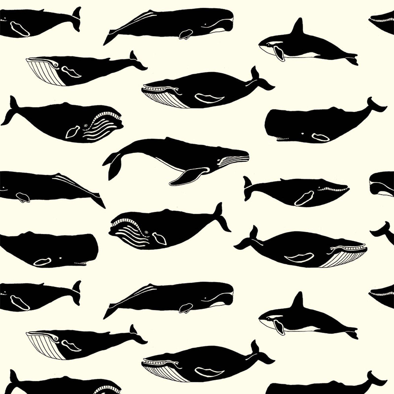 Inkwell- Whale Pod- Cream- Jay-Cyn- Birch Fabrics