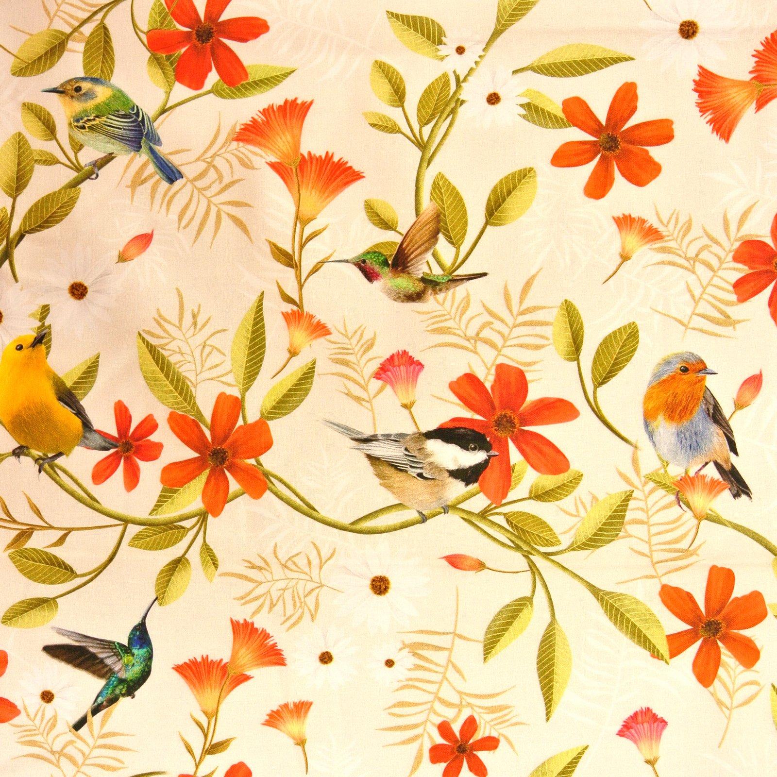 Canto Birds lt khaki