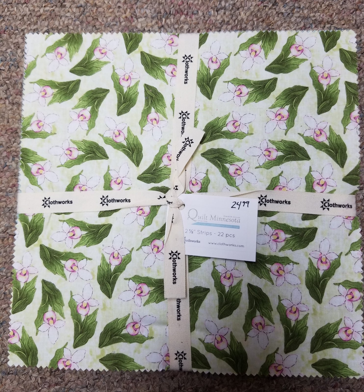 2017 Quilt MN 10 inch Squares - 22 pieces
