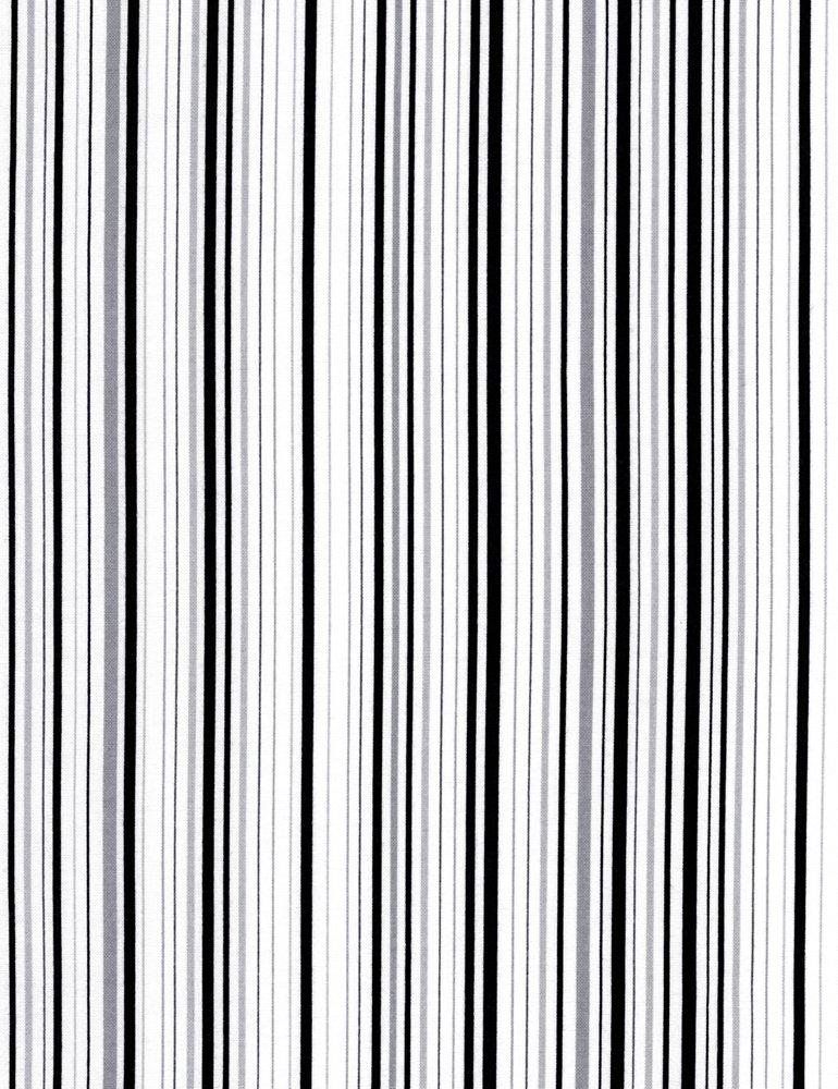 Forever Thin Stripe JN-C4997-BLACK