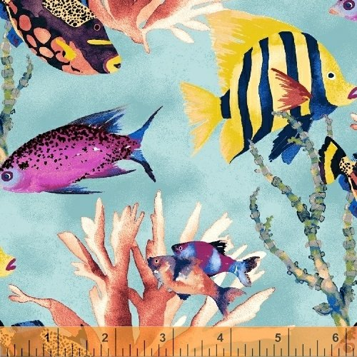 Coral Reef Tropical Fish on Blue