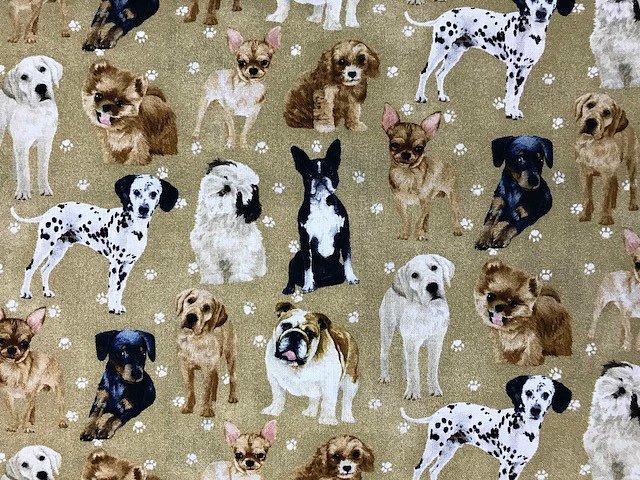My Dog Family by Paintbrush Studio (120-16031)