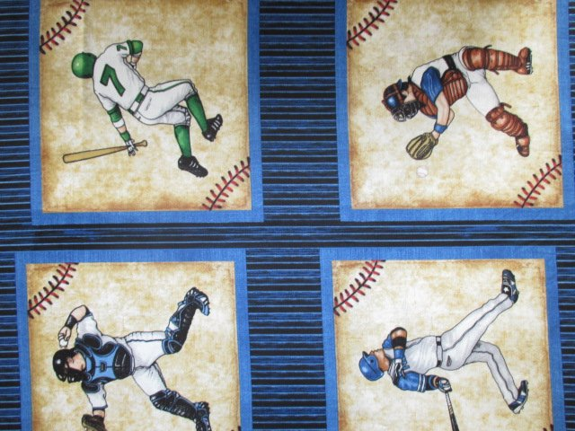 Grand Slam by Quilting Treasures (1649-24906-N)