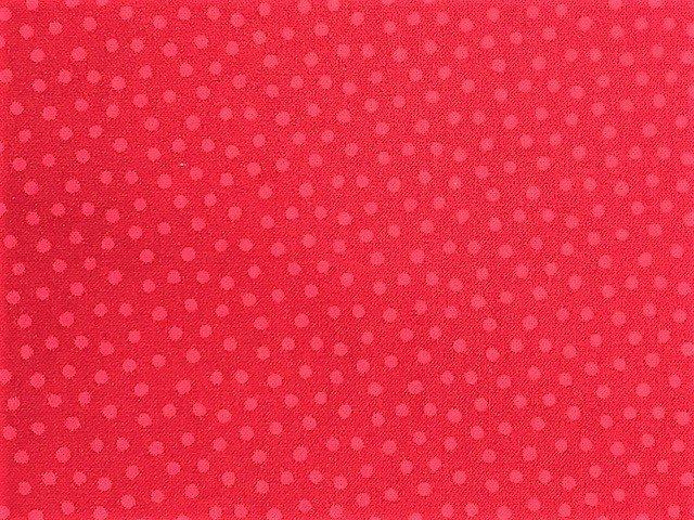 Poppy Love by Northcott (22155-24)