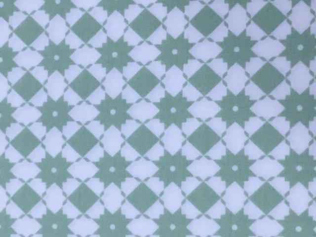 Garden Variety by Moda Fabrics (5072-11)