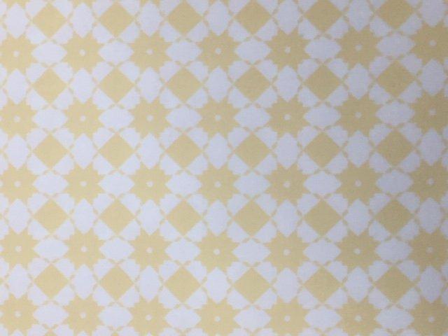 Garden Variety by Moda Fabrics (5072-17)