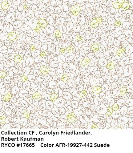 Collection CF by Carolyn Friedlander for Robert Kaufman