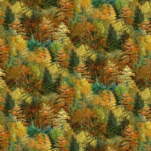 Hidden Valley by Wilmington Prints (1662-30180-587)