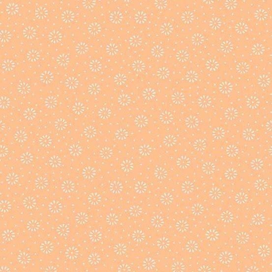 Daisy, Andover, Peach -9047-O2