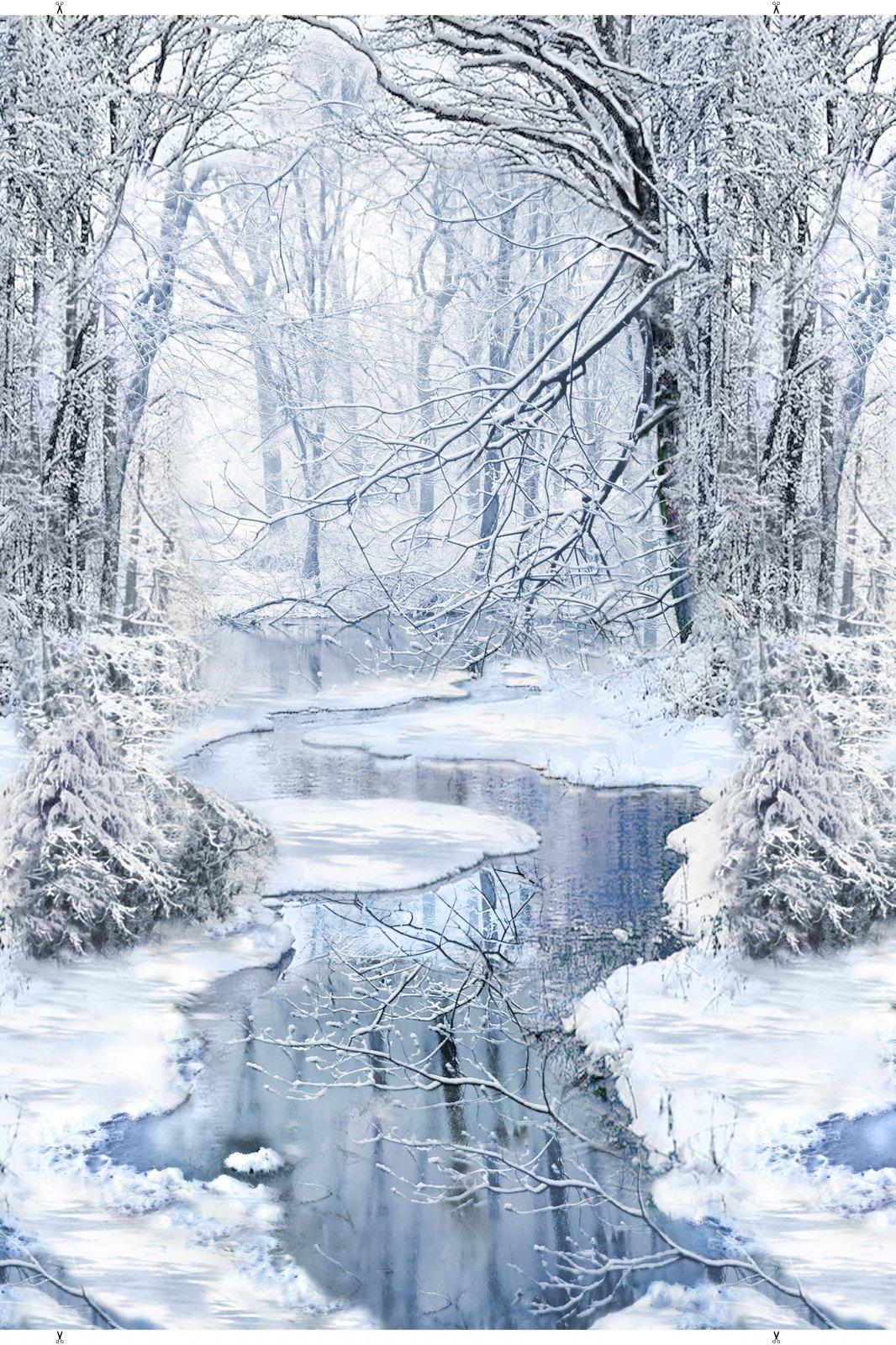Winter Wonderland Panel by Timeless Treasures