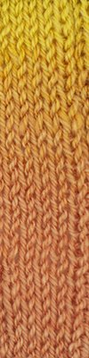 Cherub Aran Wave yarn by Cascade