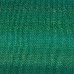 Encore Colorspun Worsted yarn by Plymouth