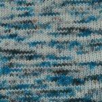Happy Feet 100 Splash Hand Dyed yarn by Plymouth