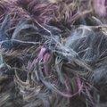 Plume yarn by Prism