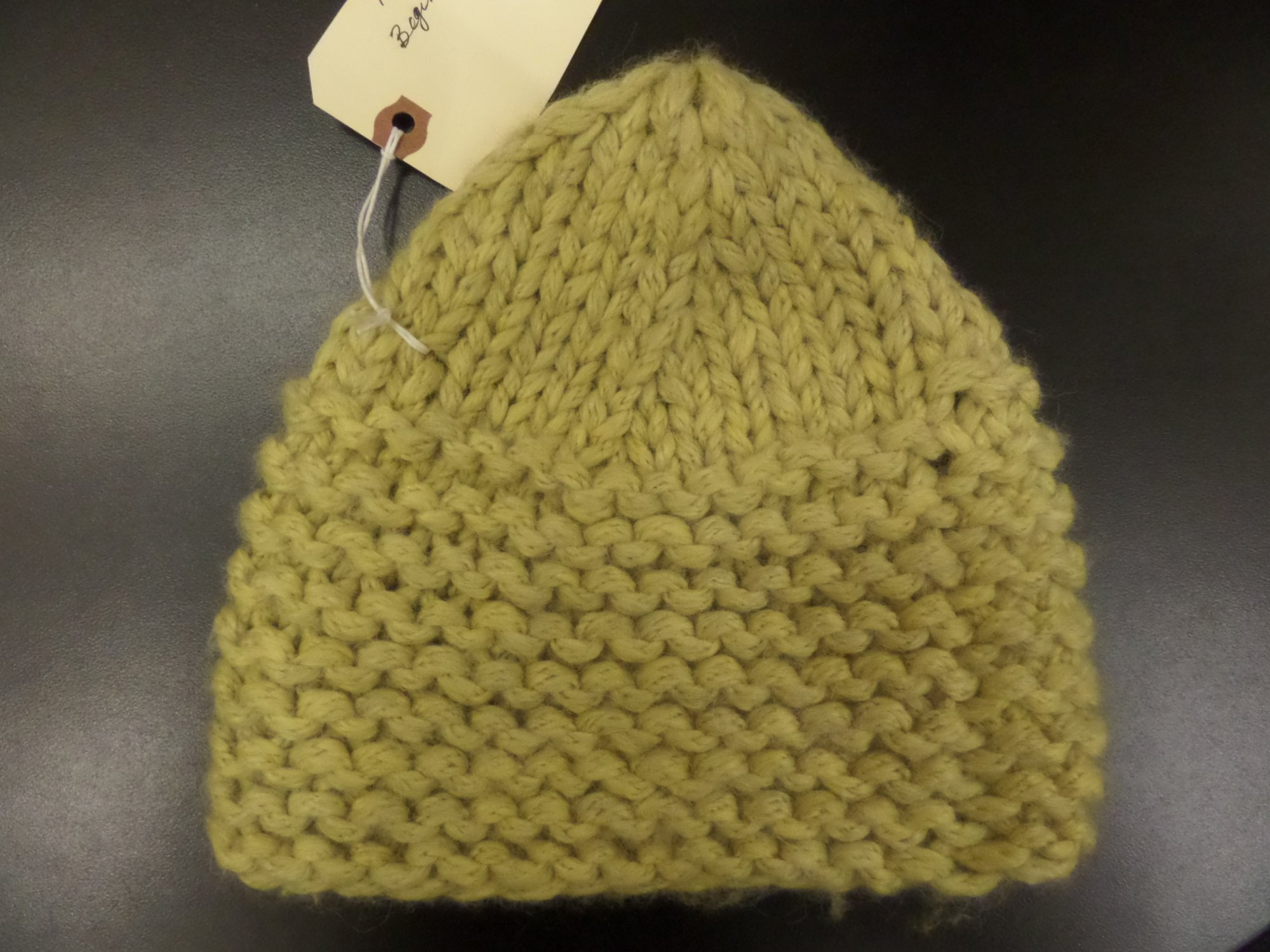Great Beginner Hat Project model in Plymouth Baby Alpaca Magna