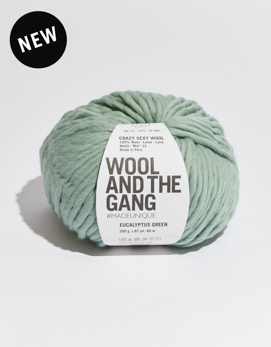 Crazy Sexy Wool by Wool and the Gang
