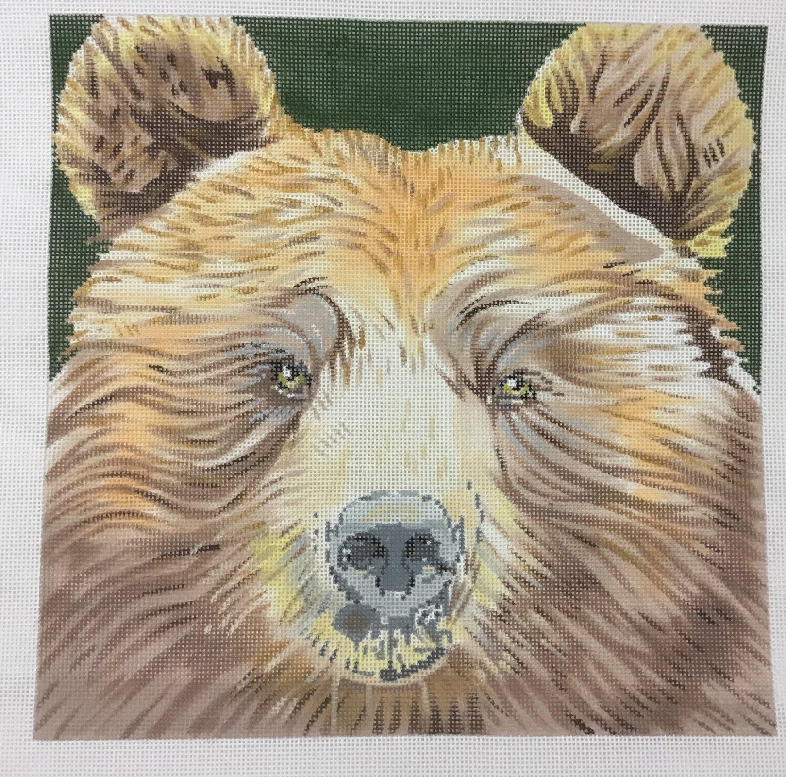 Big Bear, 13M, 13x13