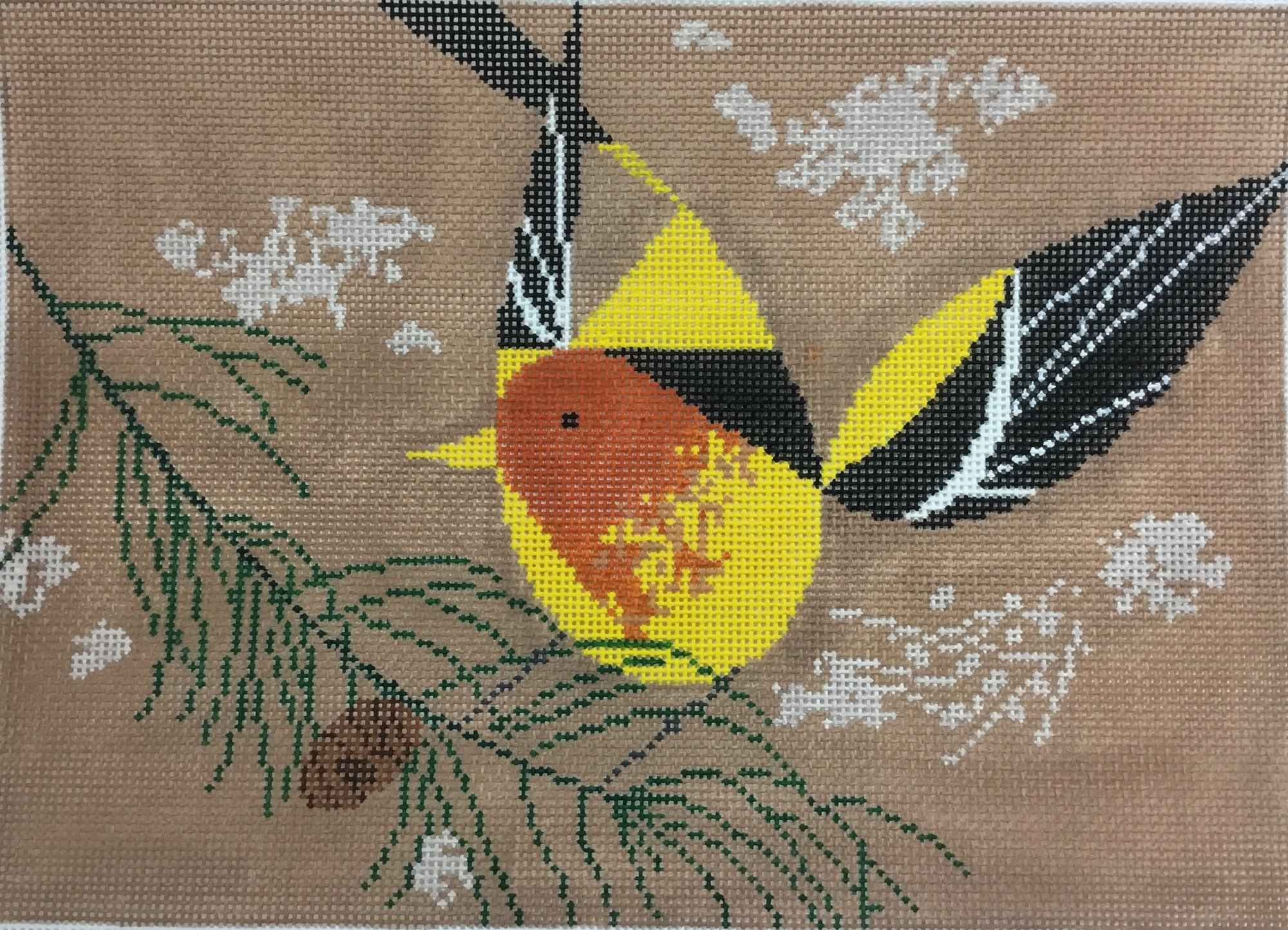 Western Tanager,13 ct.,13x17