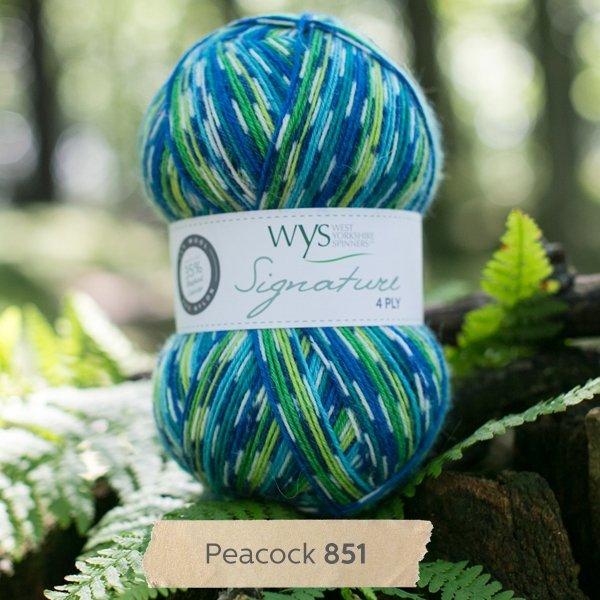 Signature 4 Ply-#851 Peacock