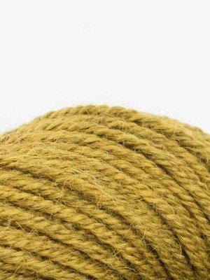 Dune-#2041 Pollen