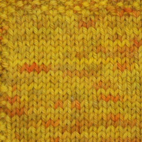 Tonos Handpaint Worsted-#TW67 Golden