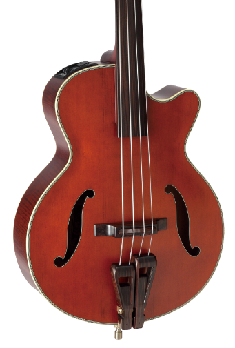 Takamine TB10 Fretless Acoustic Electric Bass