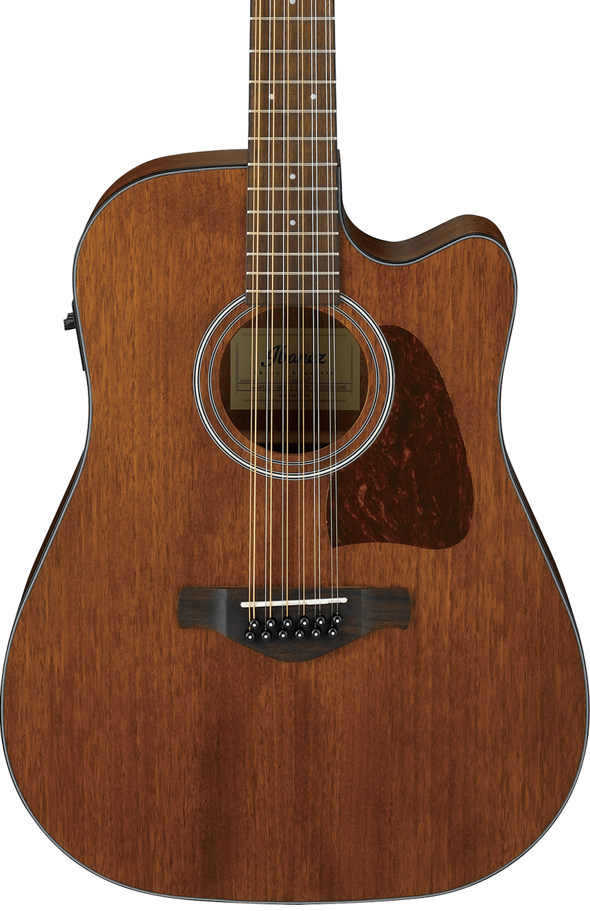 Ibanez AW5412CE 12 String Acoustic/Electric