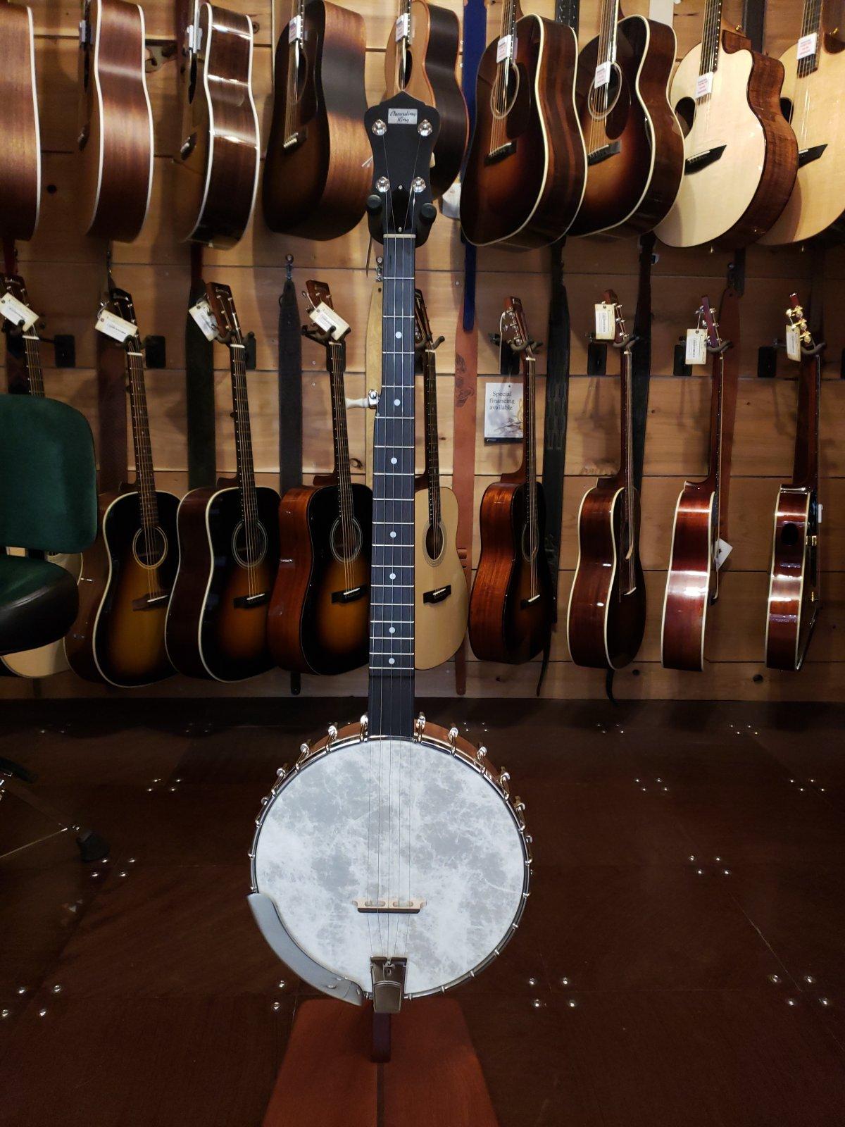 Recording King RK-OT25-BR Madison Open Back Banjo #2708
