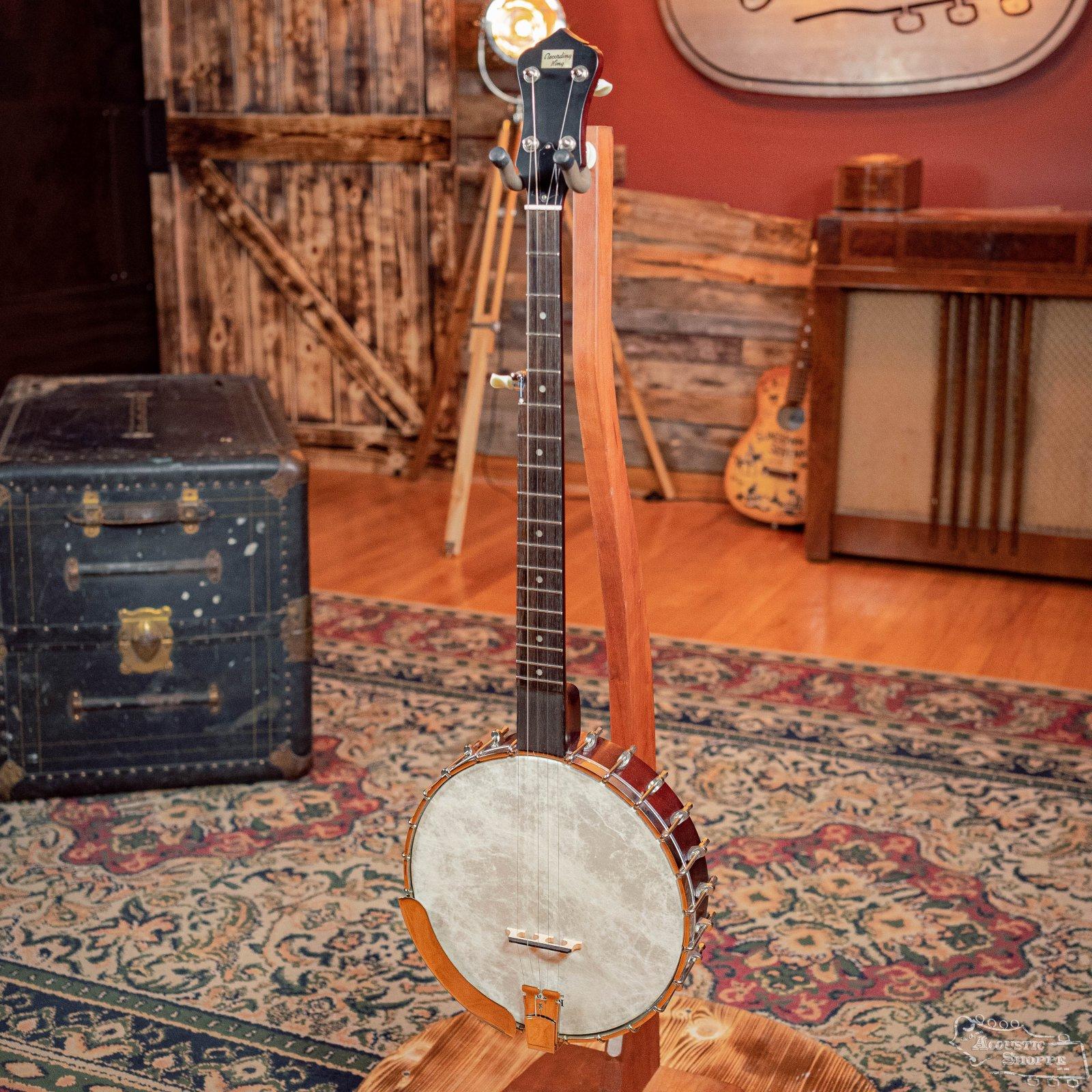 Recording King RK-OT25-BR Madison Open Back Banjo #1076
