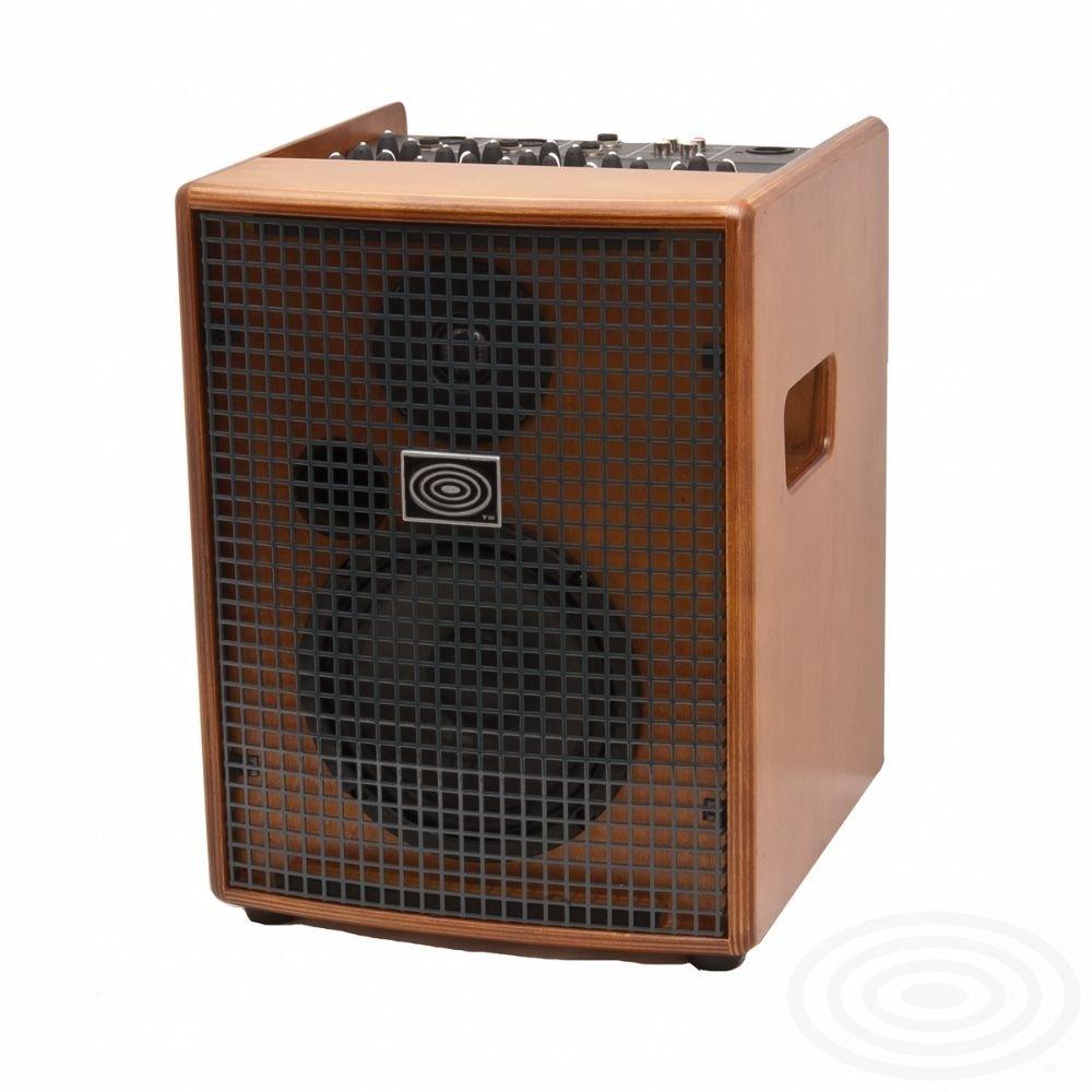 Schertler Amp JAM 100 (Wood)