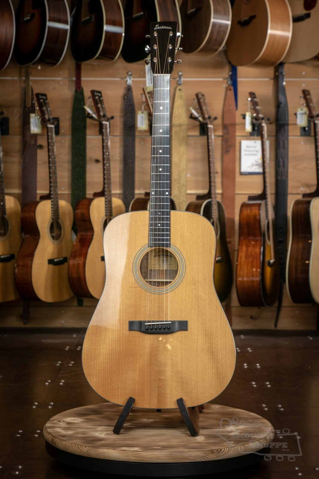 Eastman E10D-TC Thermo-Cured Dreadnaught #5245