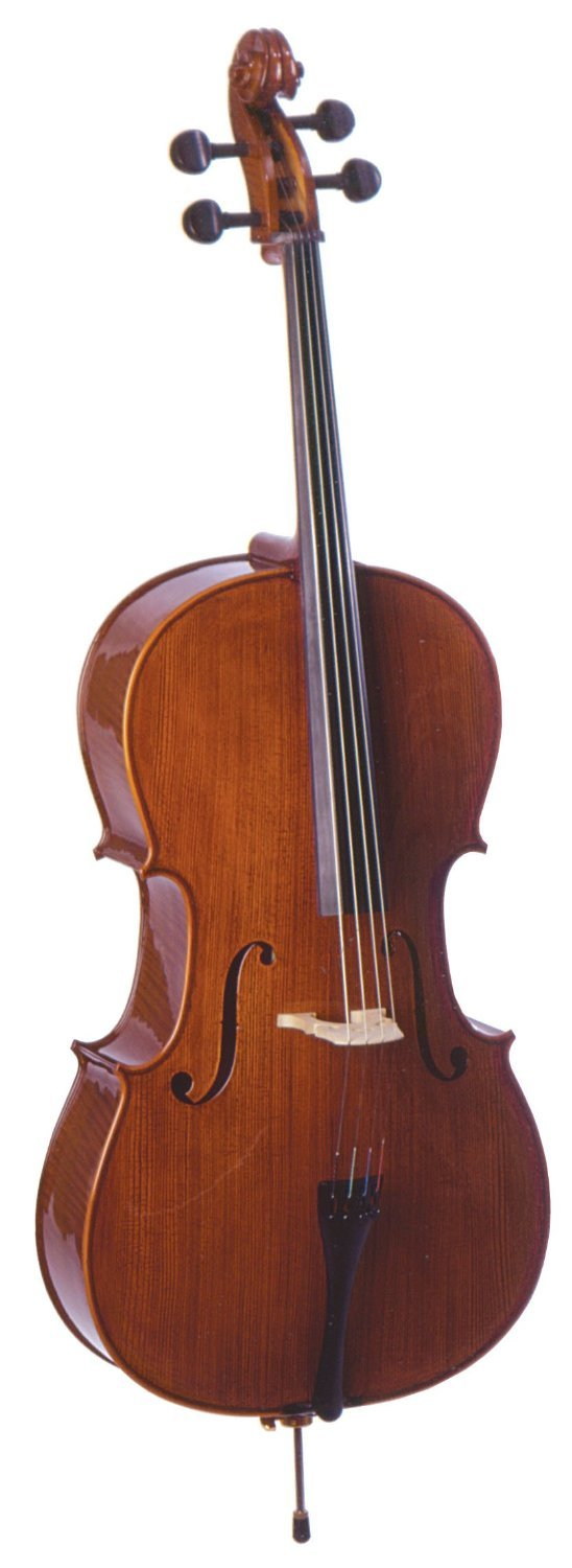 Palatino VC-850 Dolce Cello Outfit 4/4 Size
