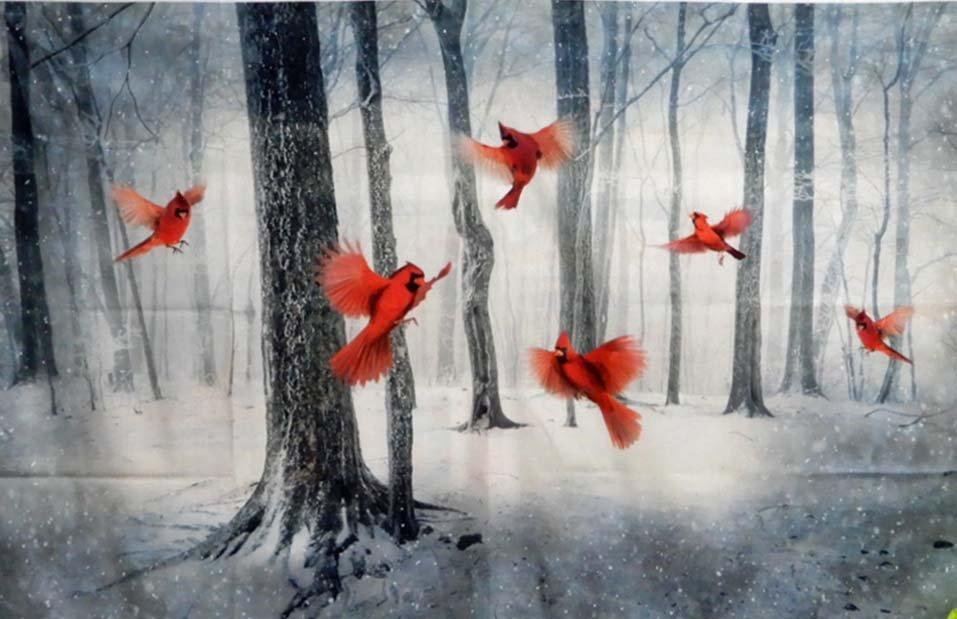 Call of the Wild: Cardinals