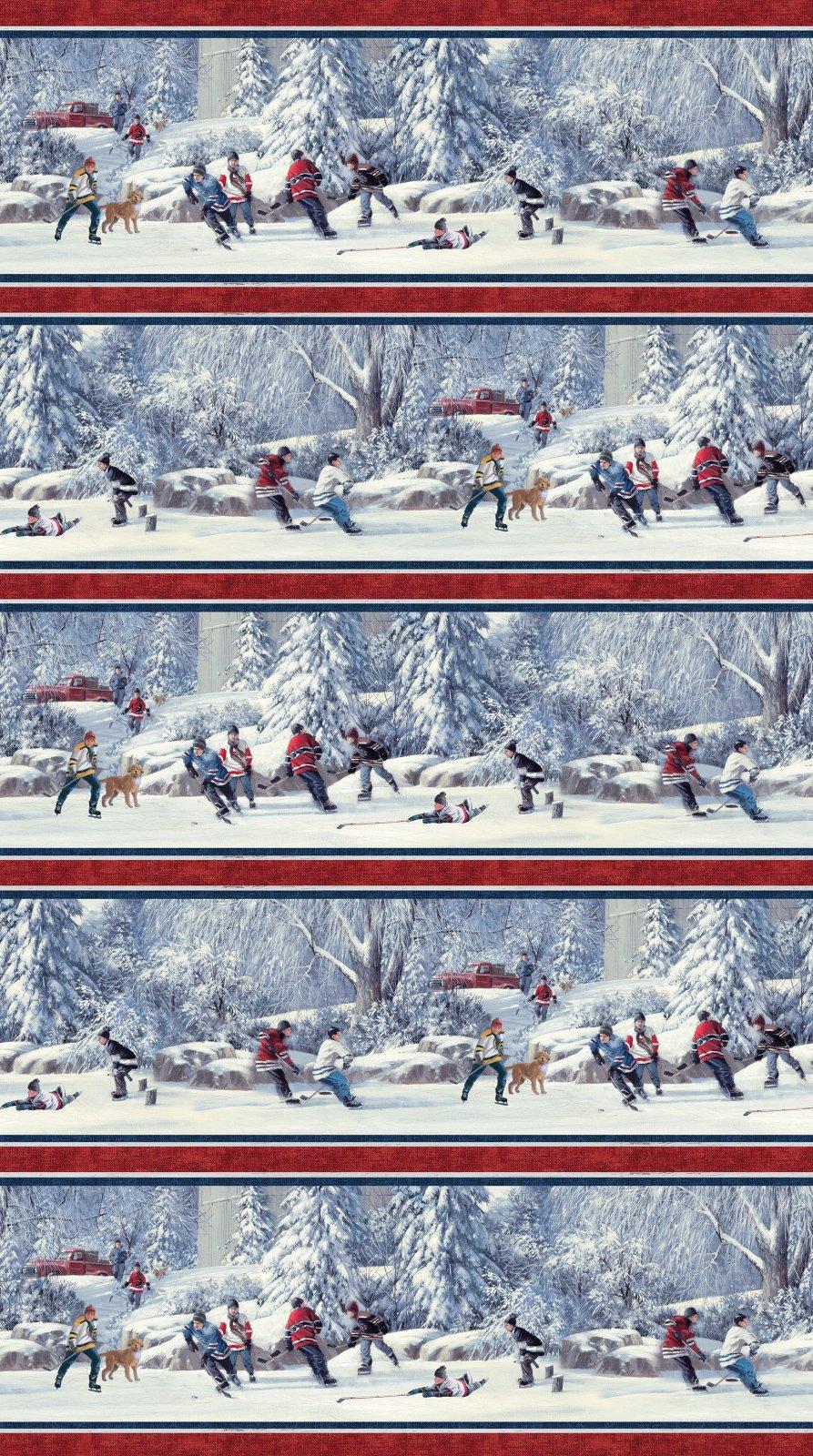 Hometown Hockey DP49