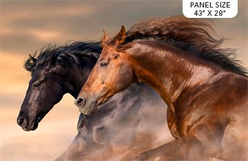 Maverick Single Colorway Horses Panel 43x28 DP23613-12