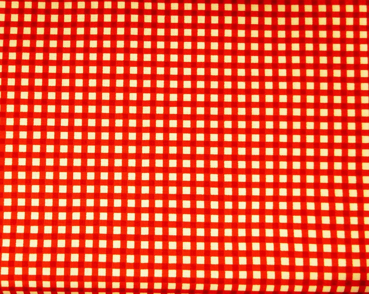 Let's Go Glamping- Red Gingham