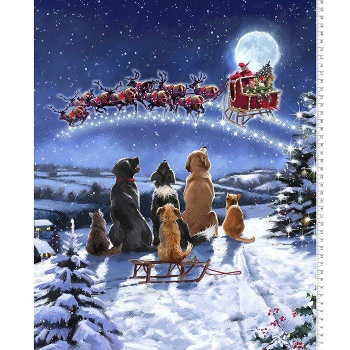 013 - Santa's Friends Midnight Meeting