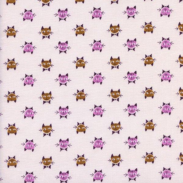 Calicocats in Peach
