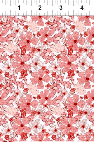 Poppy in Coral
