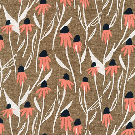 Echinacea in Nutmeg
