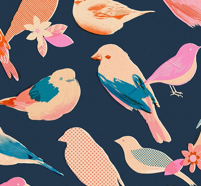 Mixed Birds in Navy