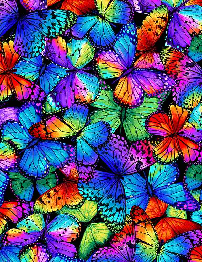 Butterfly Multi by Timeless Treasures C8531