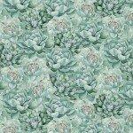 Green Succulents by Anne Rowan 3007-68519-777+