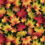 Autumn Time Forest Leaves by Color Principle for Henry Glass 2321 66 BOLT 2+