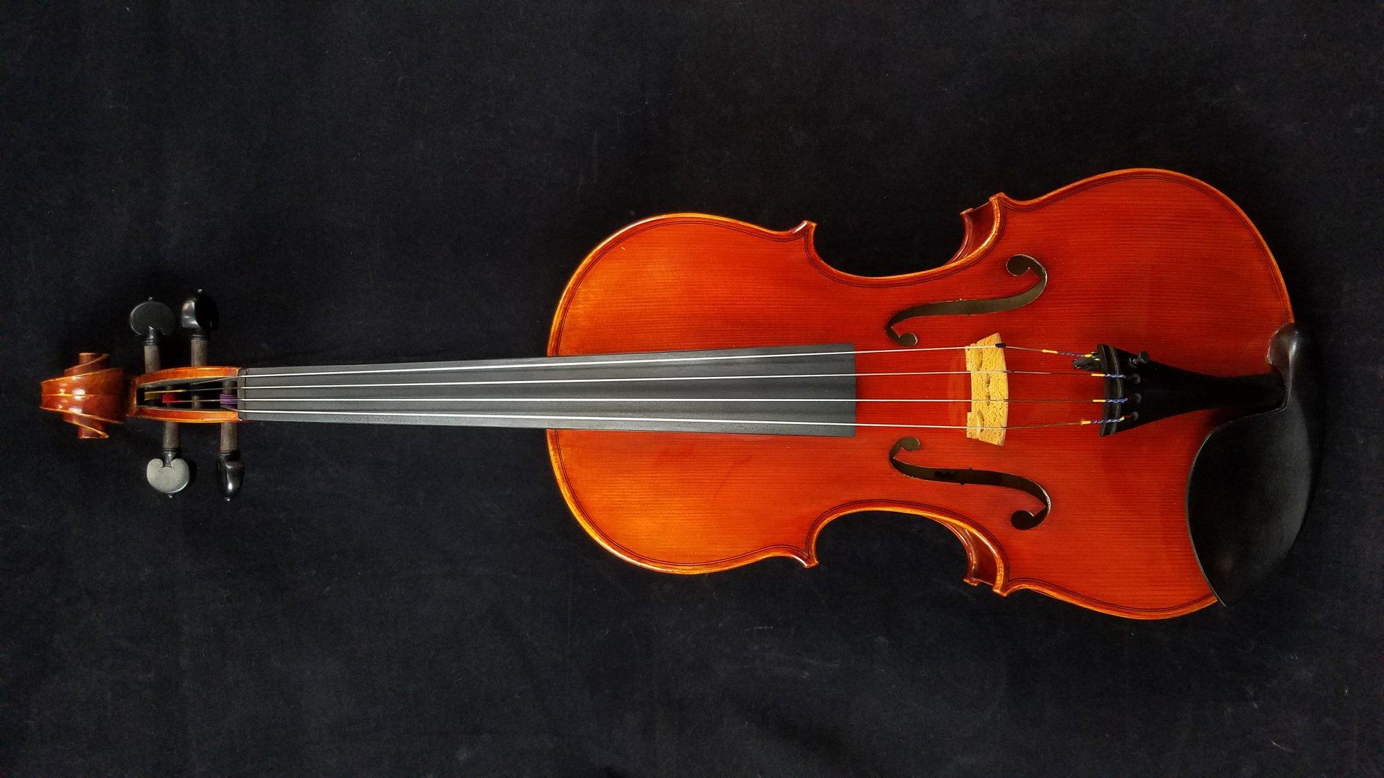 FirePhoenix FA300 Vibrante Viola 15.5